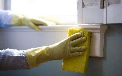 Removing Mold in Your Home Using Natural Household Products